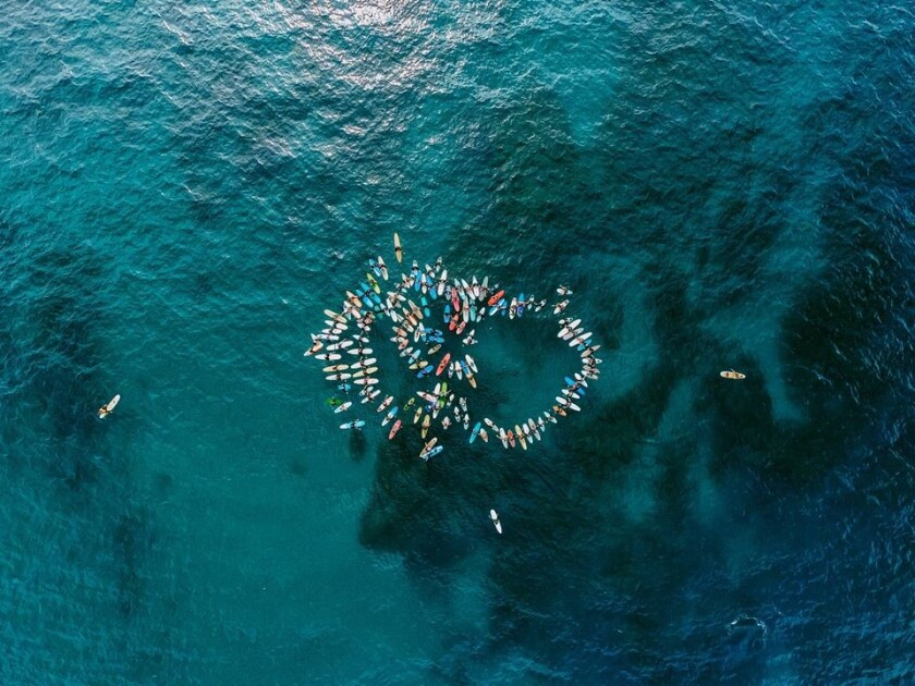 A drone photograph of a local paddle-out memorial service on Oct. 13 led by Cardiff surfing legend Rob Machado in honor of fellow Cardiff resident Tate MacDowell, who passed away Oct. 4 at the age of 39. More than 300 people attended the filmmaker's memorial service.
