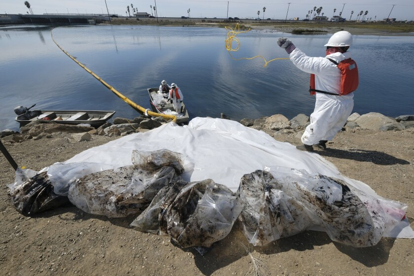 Cleanup contractors collect oil in plastic bags