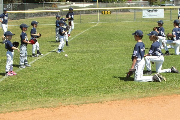 Buddy baseball where Majors division players team up with Rookie players