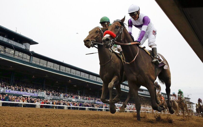 FILE - In this Oct. 31, 2015, file photo, Nyquist, front right, with Mario Gutierrez up, finishes ahead of Swipe, left, with Victor Espinoza up, to win the Breeders' Cup Juvenile horse race at Keeneland race track in Lexington, Ky. Nyquist is gearing up for his 3-year-old debut in the seven-furlong