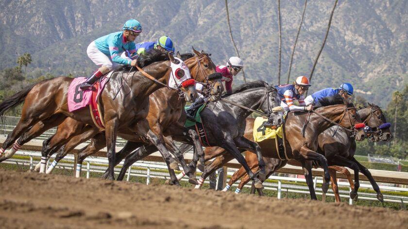 Horses gallop at Santa Anita Park on March 29.
