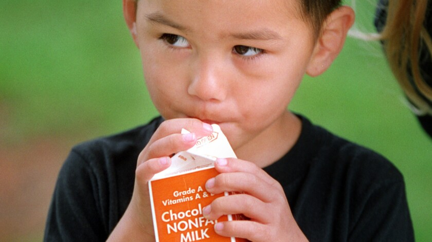 A young chocolate milk drinker.