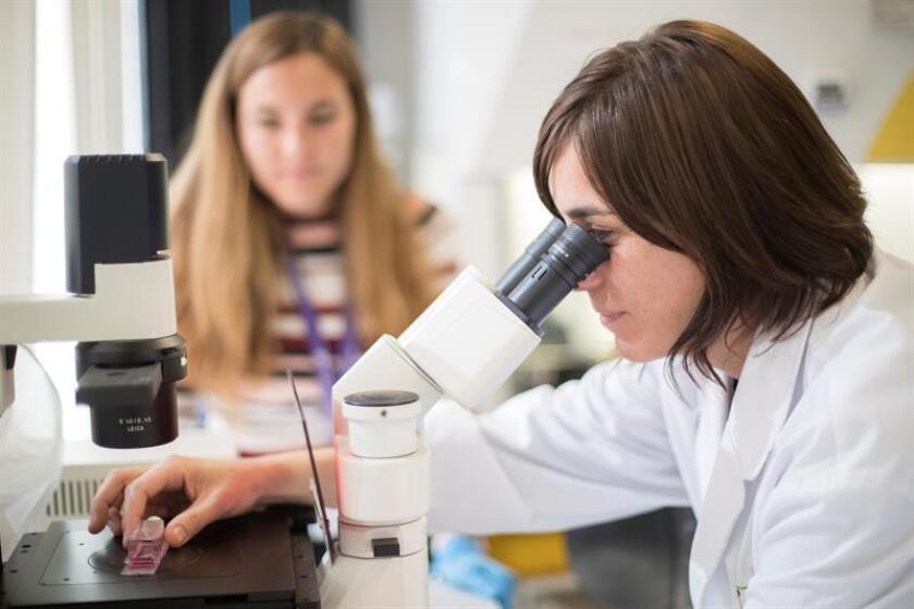 Científicos de la Universidad de Carolina del Norte han descubierto una enzima, la USP21, que favorece la proliferación del cáncer de mama más agresivo, conocido como de tipo basal o triple negativo, según un estudio publicado hoy en la revista Cell Reports. EFE/Archivo