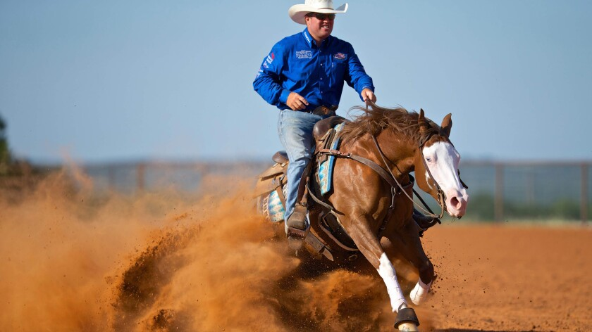 Reining  competition in Las Vegas.