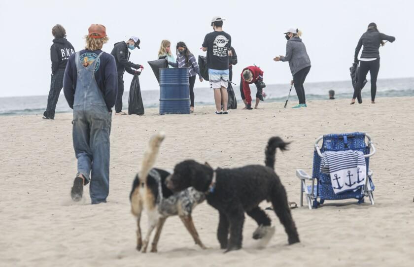 Voluntarios trabajan en la playa de Ocean Beach en el evento de limpia I Love a Clean San Diego en abril.