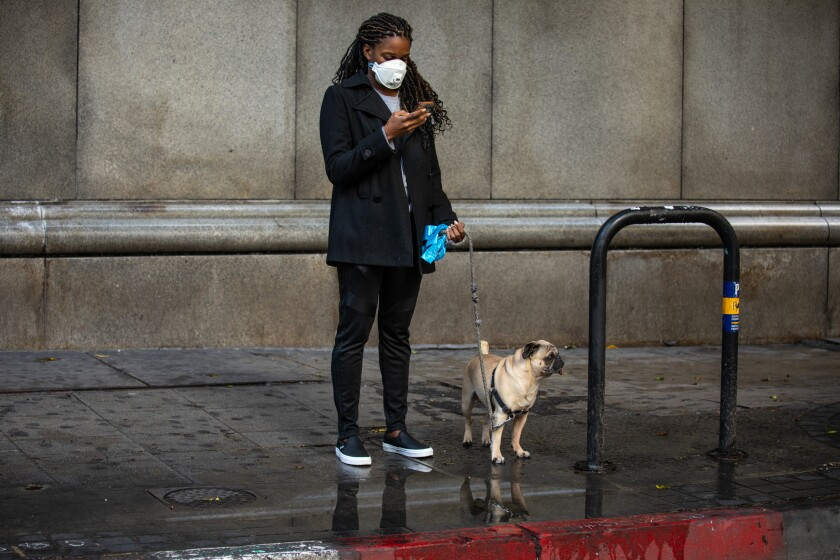 A woman wears a protective mask while walking her dog.