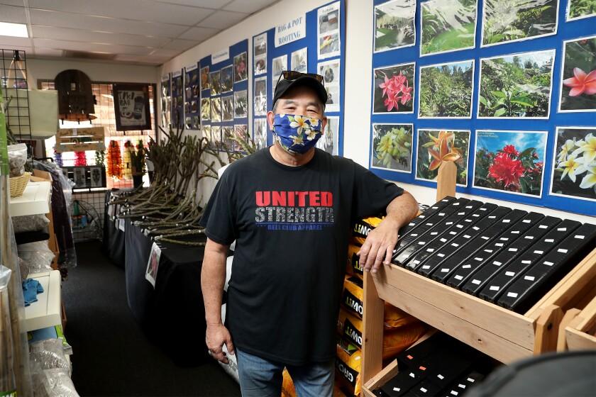 Owner David Konishi poses inside of his shop Konishi Plumeria in Cypress.