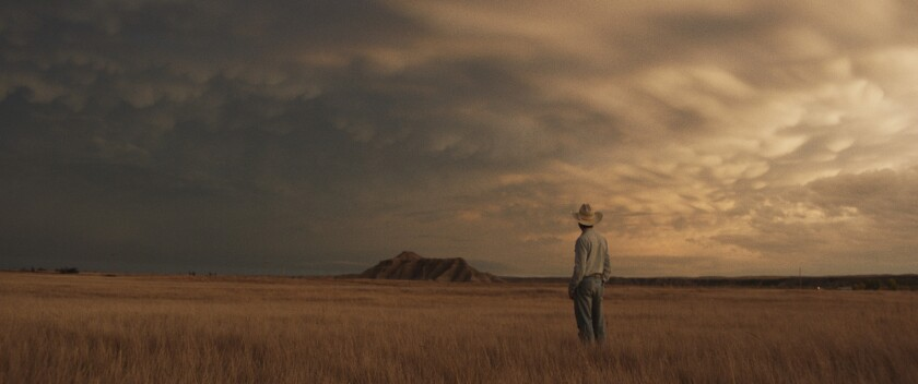 A man in a cowboy hat stands in an expansive field.