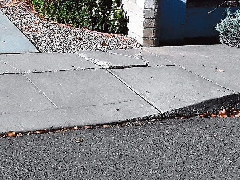 This cracked-sidewalk trip hazard was spotted on Beaumont Street in La Jolla.