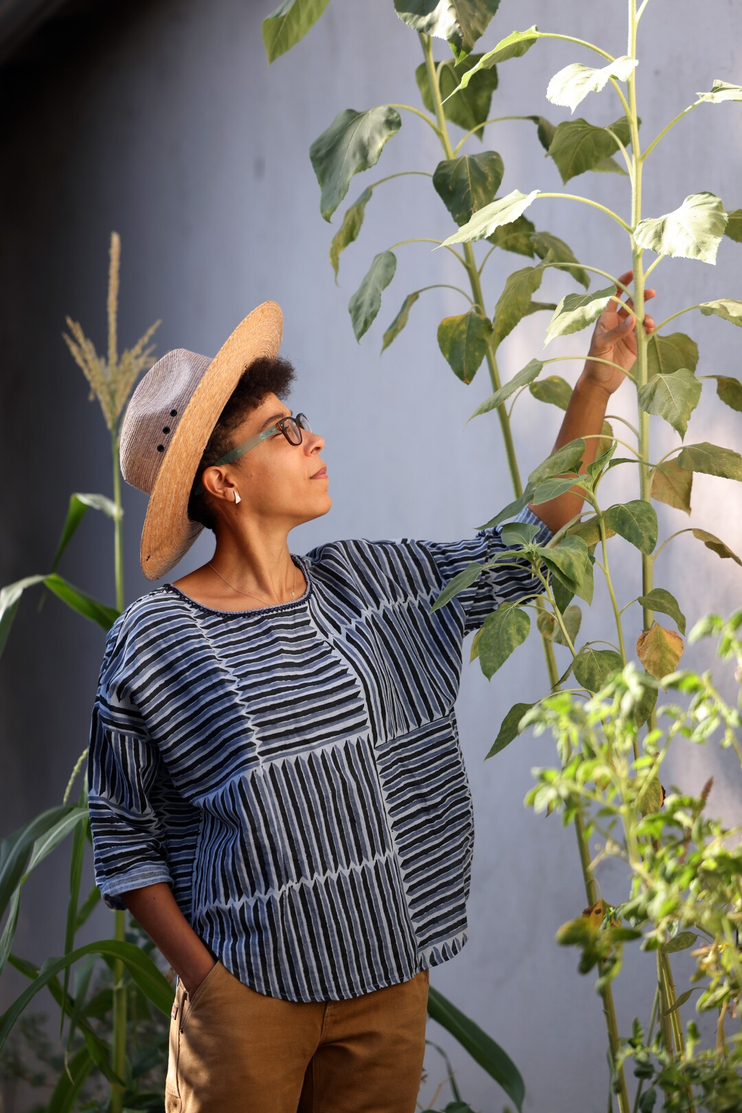 A woman wearing a straw hat stands next to tall plants.