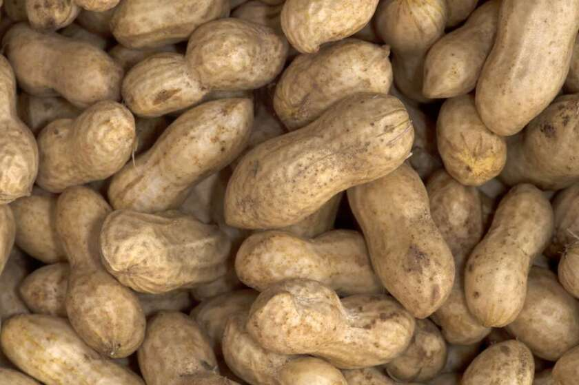About 3 million people in the U.S. have peanut allergies.