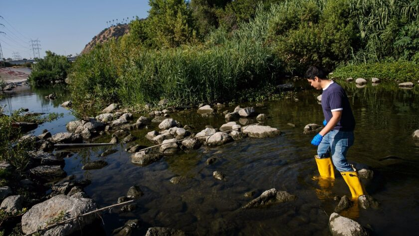 Nelson Chabarria collects water samples from the L.A. River.