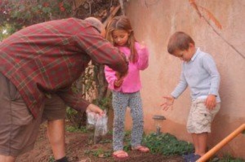 Mark Bucon gives his neighbor, 5-year-old Astrid Egan, some seeds to plant, while her brother 2-year-old Fred Egan, throws them in the ground.
