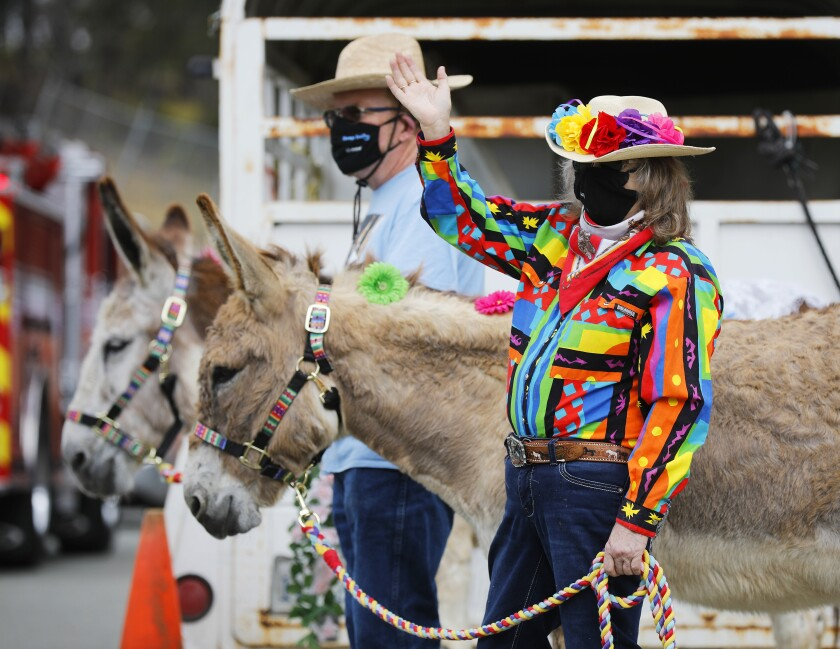 Michael and Lorri Rothbart of Party Pony Express, along with their donkeys Sasha and Comet, greet guests during a drive-through circus to celebrate the Jewish festival of Lag B'Omer at the Chabad of San Diego headquarters campus in Scripps Ranch on May 12. Thousands of people attended the event that was complete with circus acts, live music and festival floats.