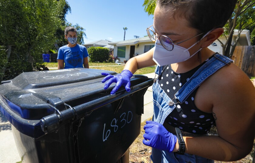 Keira McGee uses a swab to collect a sample from a trash can outside her College-area home Wednesday. A costume creator for a local theatre, McGee signed up with a new initiative from San Diego State University that seeks to find and better understand how novel coronavirus spreads and mutates on common shared surfaces. Also taking part in the citizen science project is her roommate, Jacque Rosa.