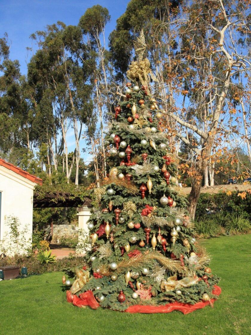 Bed-Head breakfast guests were greeted by the RSF Golf Course holiday tree