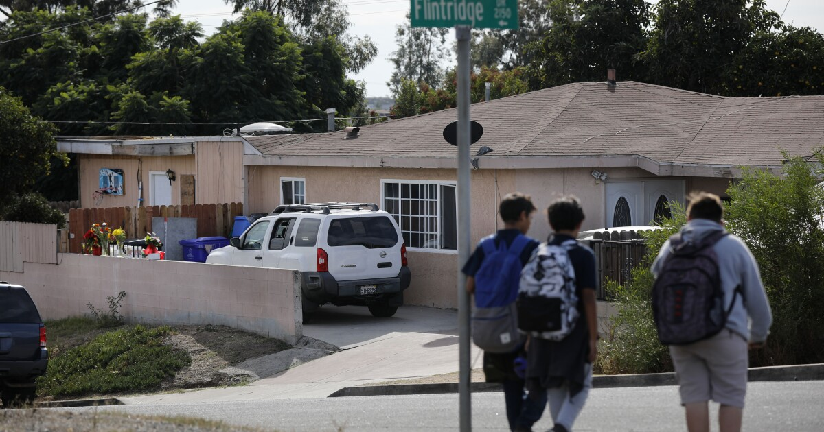 Mother killed in Paradise Hills murder-suicide endured months of harassment, threats, court records show - The San Diego Union-Tribune