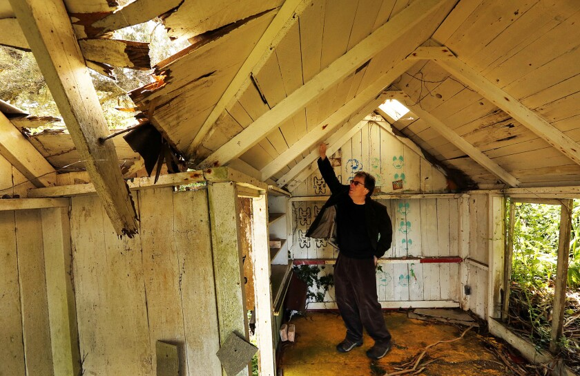 Peter Lewis, youngest son of artist Clayton Lewis, inspects the roof of the guest house at Laird's Landing in Point Reyes National Seashore.