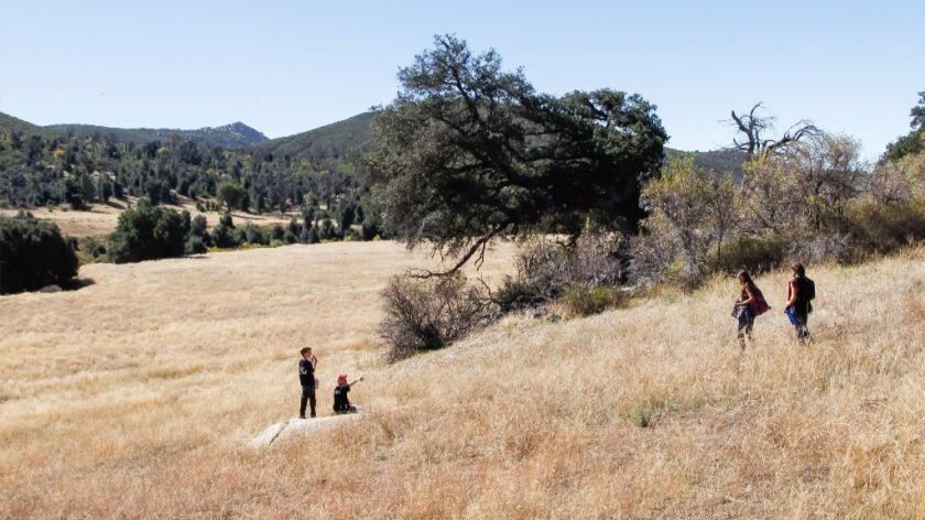 Students hike, make observations and take notes while looking for birds during a class on Oct. 12 in Cuyamaca Rancho State Park in San Diego County.
