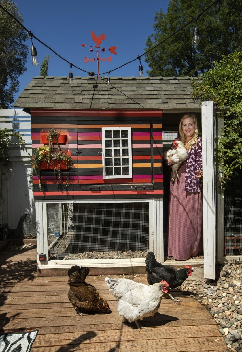 Kate Richards holds her Delaware chicken Princess Vespa inside the coop she designed.
