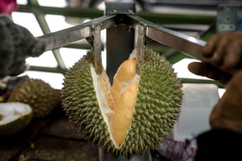 Un trabajador abre un durián para los clientes en un puesto de frutas en la carretera. (Suzanne Lee /Especial para en Times)