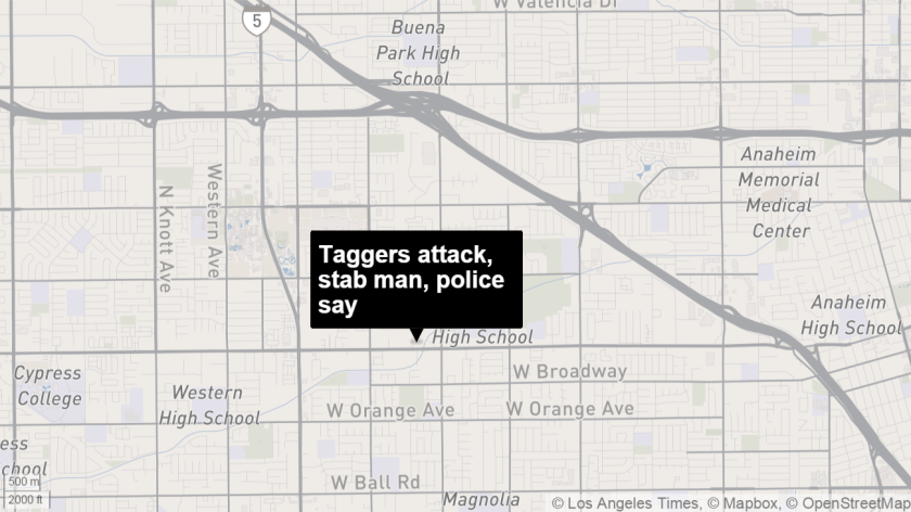 A man was stabbed after confronting taggers defacing an empty home in Anaheim, police say.