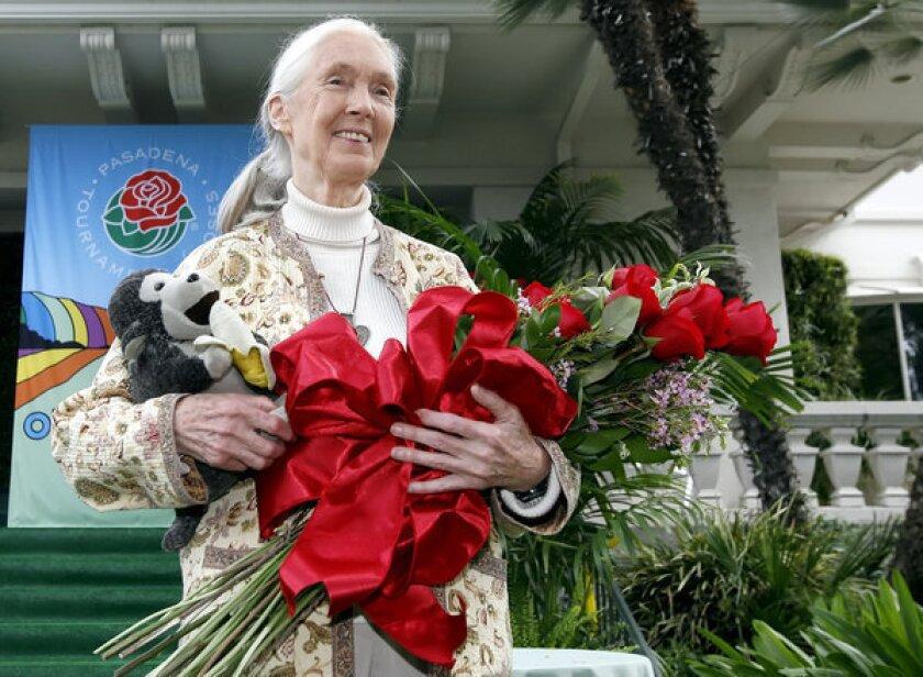 Jane Goodall named 2013 Rose Parade grand marshal
