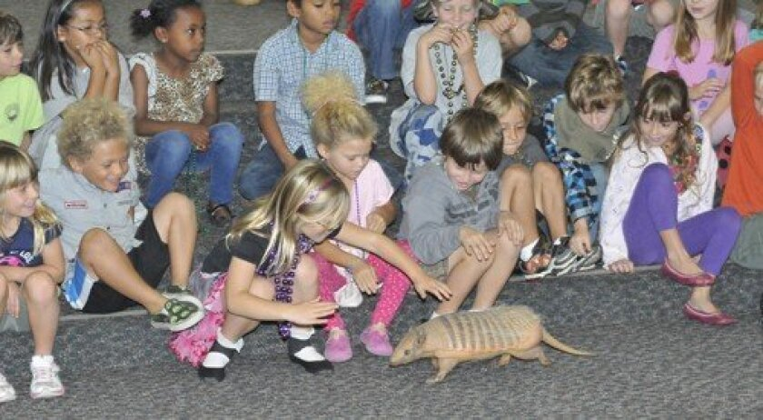Dozer the armadillo makes the rounds. Some wanted to touch — others not so much. (Photo: Rob McKenzie)
