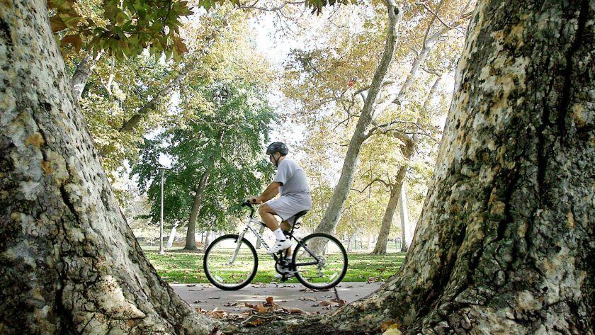 A cyclist rides his bike through Verdugo Park in Glendale in 2007.