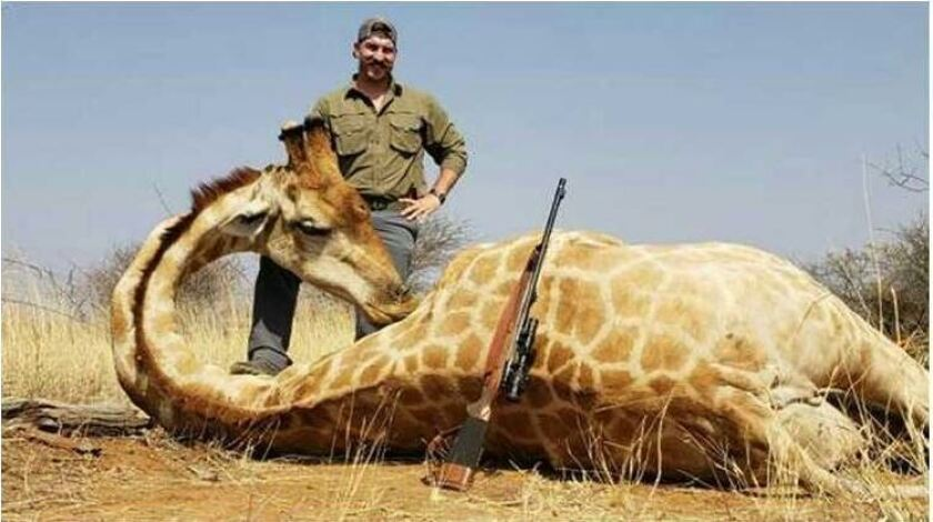 Idaho Fish and Game official resigns after posing with animals he killed on Africa hunting trip