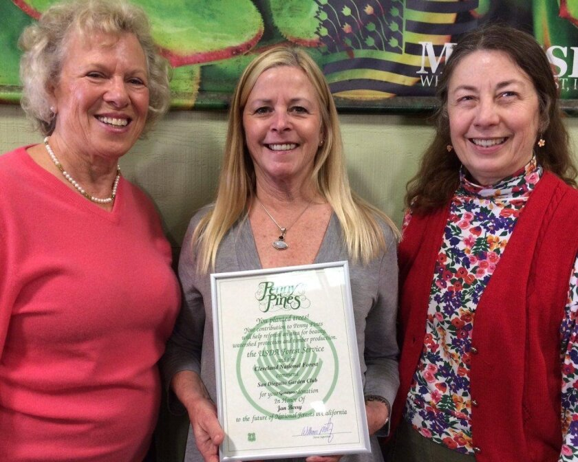 The San Dieguito Garden Club supported the Penny Pines Conservation Program in honor of Jan Berry, executive director of the San Diego County Flower and Plant Association. The club collected donations of cut flowers from local growers and association members for a flower arranging event at the San