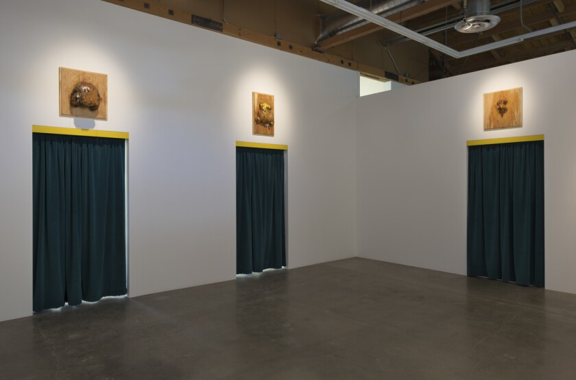 """The installation view of William Pope.L's """"Forest"""" at Susanne Vielmetter Los Angeles Projects."""