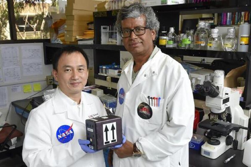 Clay Wang, professor of pharmacology at USC, left, and Kasthuri Venkateswaran, a senior research scientist at JPL, will be part of the first team in the world to launch fungi into space for the purpose of potentially developing new medicines.