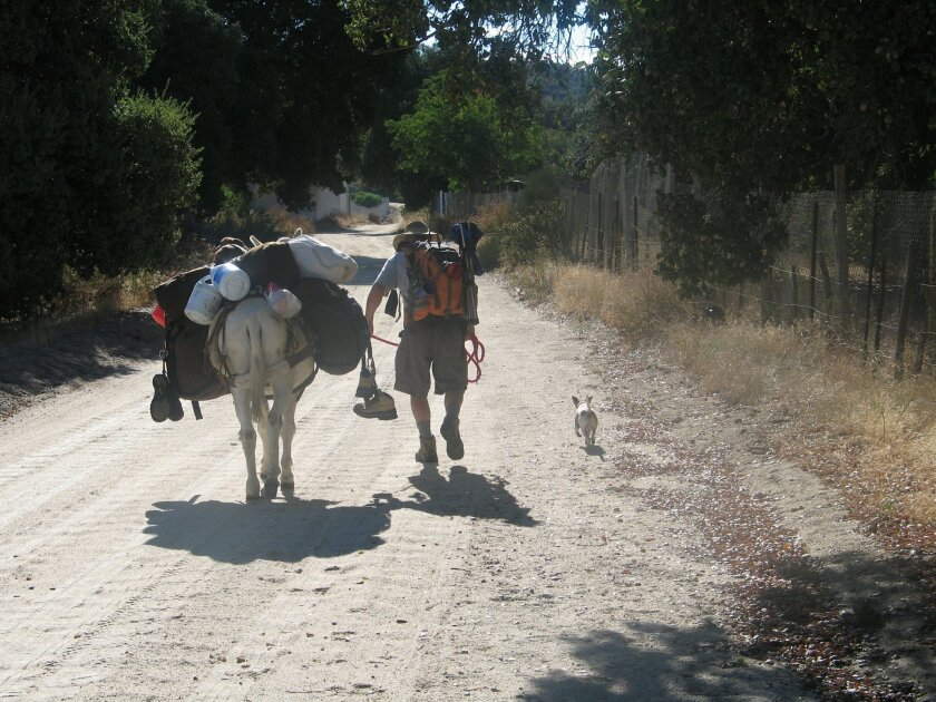 El Cajon's Mike Younghusband begins his trek of the length of Baja with his burro, Don-Kay, and two dogs, Rusty and Max.