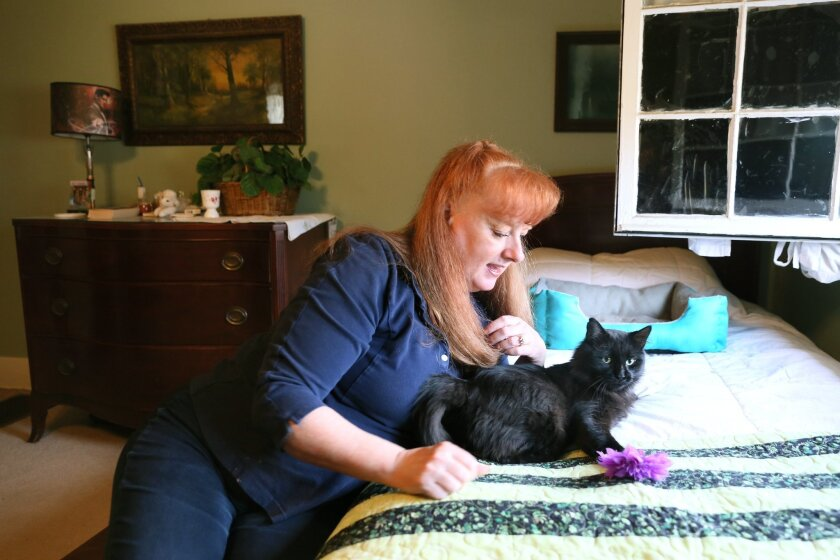 Laurie Sullivan pets a cat, Thursday, Nov. 5, 2015, she found outside her home Tuesday morning that had been shot with a crossbow arrow, in Battle Creek, Mich. Her veterinarian, Dr. Ben Huelsbergen, easily removed the arrow, and the cat is recovering at Sullivan's home. She hopes to find a permanen
