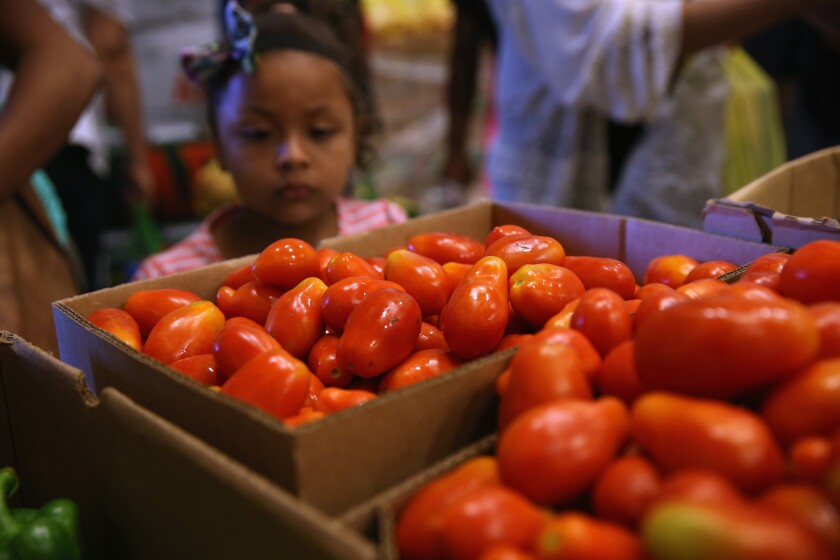 Low-income families select free bread and produce at the Community Food Bank of New Jersey on Aug. 28 in Egg Harbor, N.J.