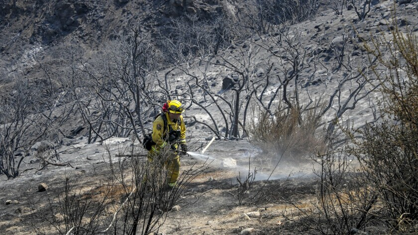 Firefighter John Ruskovich takes care of a few hot spots left over from the Holy fire in the McVicker Canyon neighborhood of Lake Elsinore in mid-August.