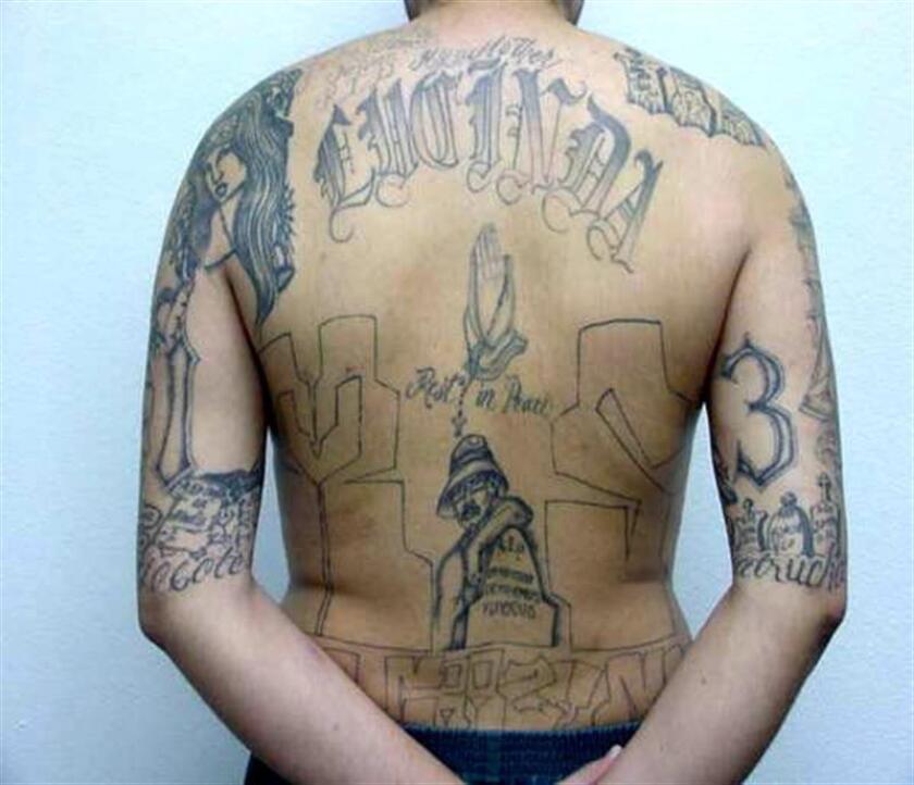 Las autoridades anunciaron hoy la detención de 267 pandilleros de la Mara Salvatrucha (MS-13) en El Salvador y Estados Unidos, en una operación policial que buscaba debilitar la estructura internacional de la banda y sus fuentes de financiación. EFE/ARCHIVO