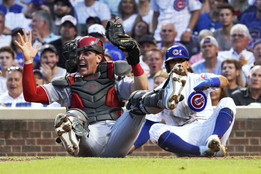 Cincinnati Reds catcher Tyler Stephenson holds up the glove and ball after tagging out Chicago Cubs' Rafael Ortega, right, during the third inning of a baseball game Tuesday, July 27, 2021, in Chicago. (AP Photo/David Banks)