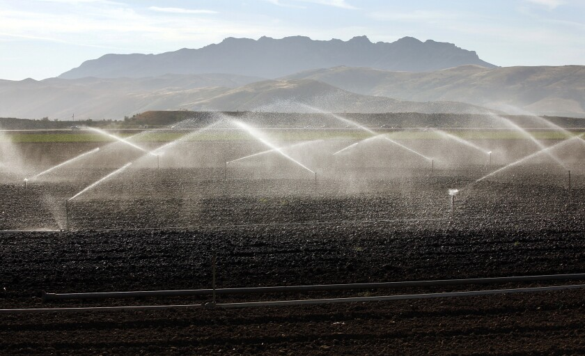 Farm fields on the Oxnard Plain being watered in April. The state has a new mandate for a 25% cut in urban water use.