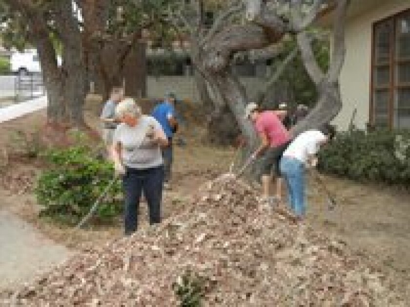 Volunteers from the Del Mar Foundation, Del Mar Community Connections and Del Mar Garden Club clean up the yard of the new Del Mar Community Building.