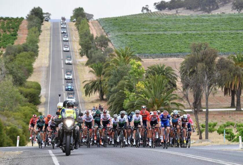 Ciclistas pedalean durante la segunda etapa del Tour Down Under que se celebra en Adelaida (Australia) hoy, 16 de enero de 2019. EFE