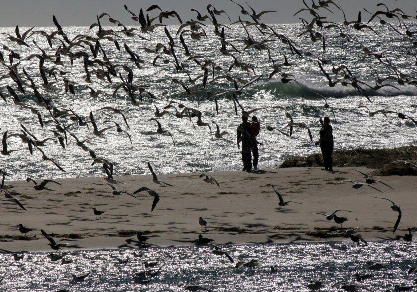 Malibu, California. (AP Photo/John Antczak)