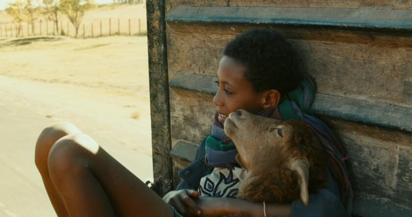Rediat Amare in 'Lamb'