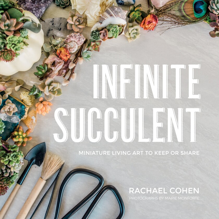 "The cover of ""Infinite Succulent."""