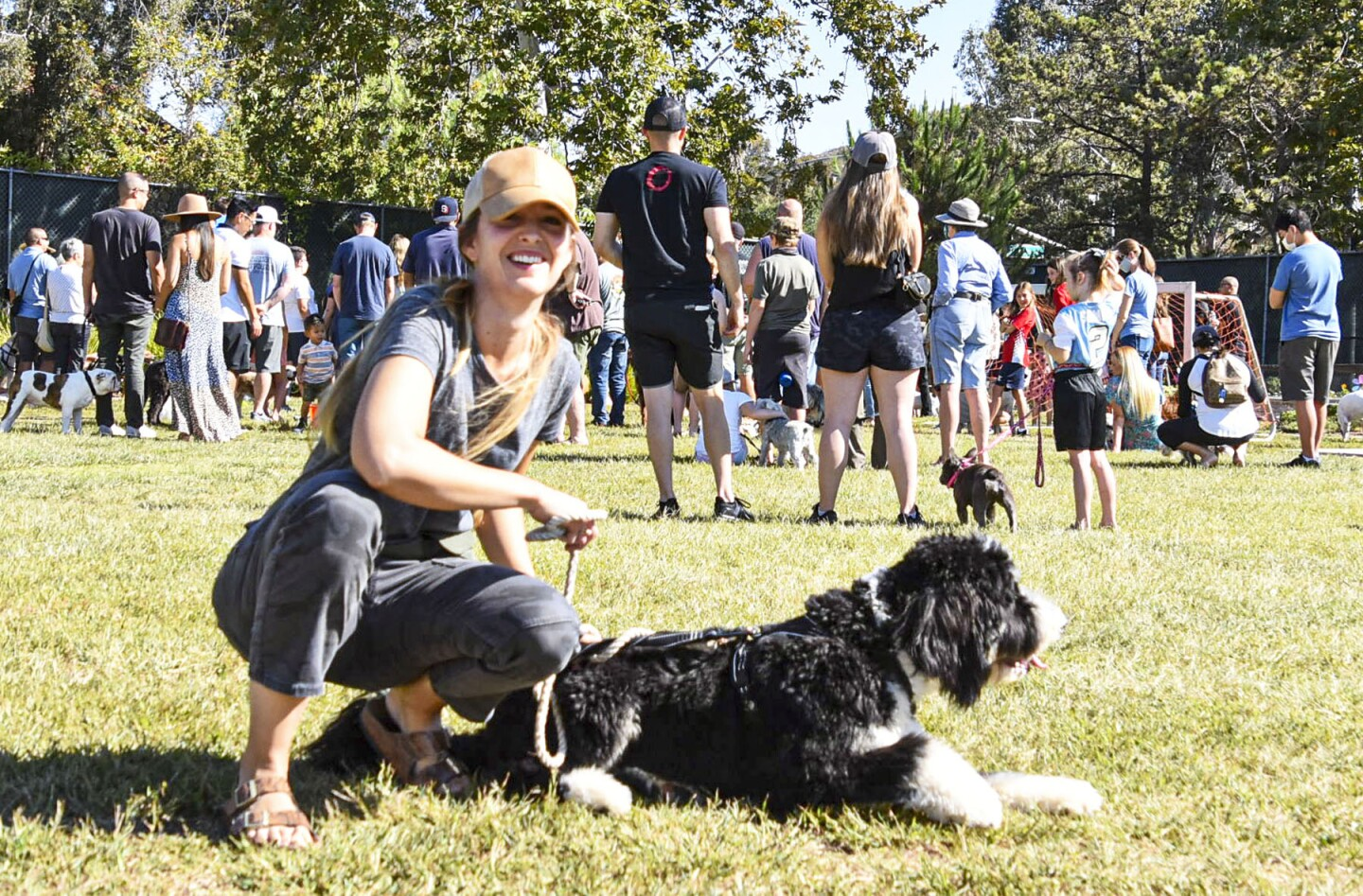 Colene Malaney brought Togo, who is half Bernese Mountain Dog and half poodle.