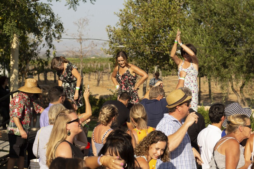 Guests stomp grapes to their hearts content.