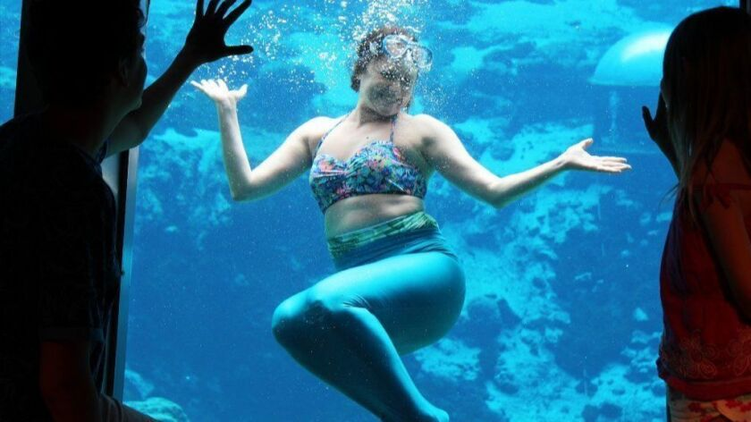 Mermaid mom Amy Bizzarri shows off her underwater skills to her son and daughter at Weeki Wachee Springs State Park in Florida.