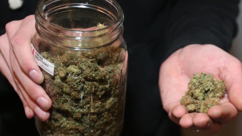 Resultado de imagen para marihuana en estados unidos