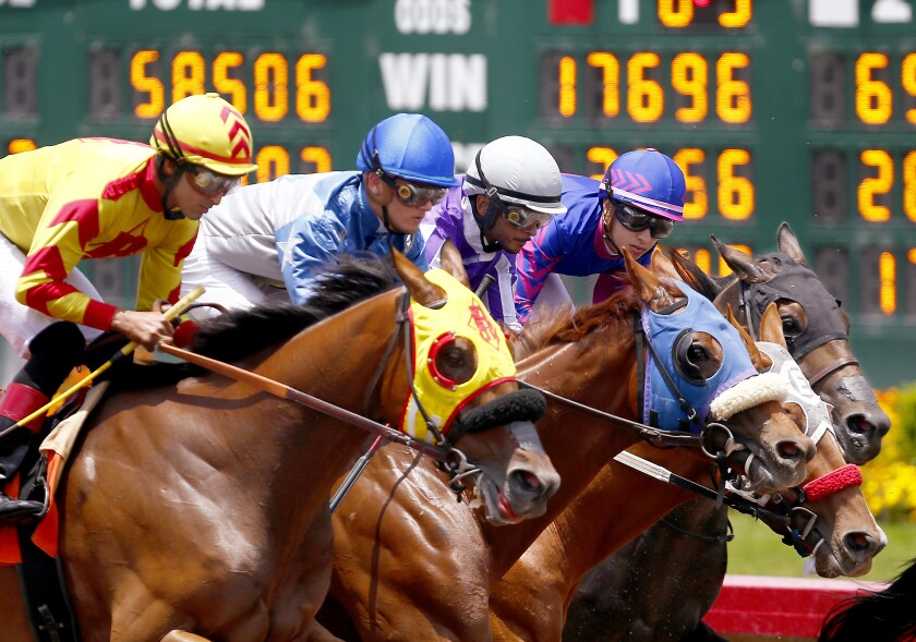 Horses and jockeys charge down the track at Los Alamitos.